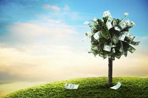 E se o dinheiro desse em árvore?